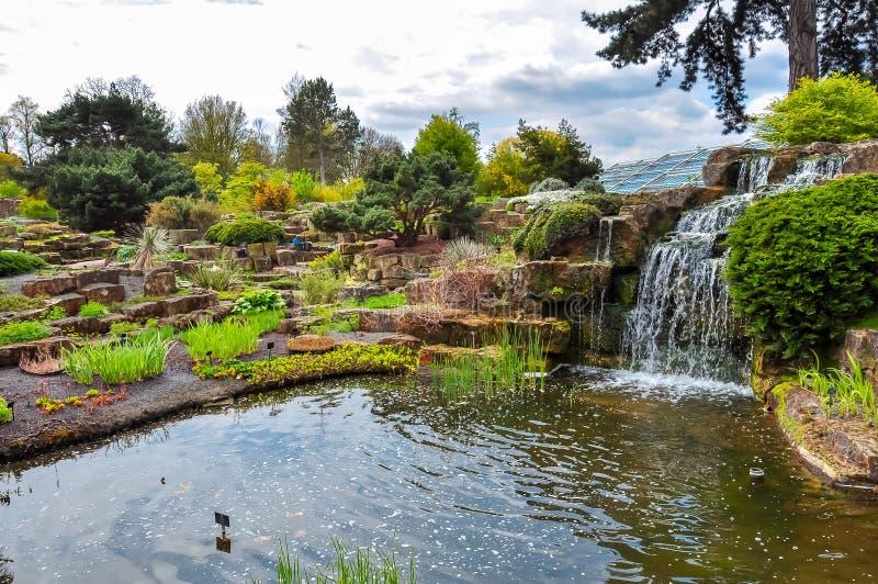 Waterfall in Kew botanical gardens, London, UK stock photo