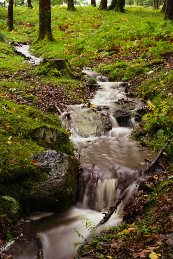 Download Waterfall stock image. Image of tranquil, forest, landscape - 36123327