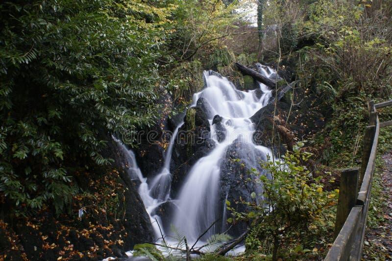 Download Waterfall stock photo. Image of woods, irish, ireland - 39505150