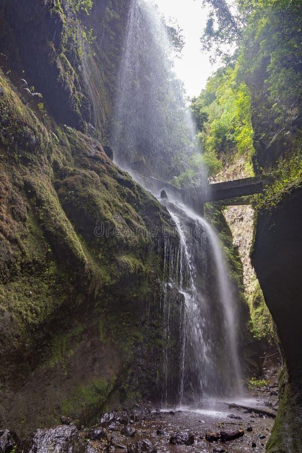 Waterfall at Los Tilos Rain Forest. La Palma. Canary Islands. Spain stock photography