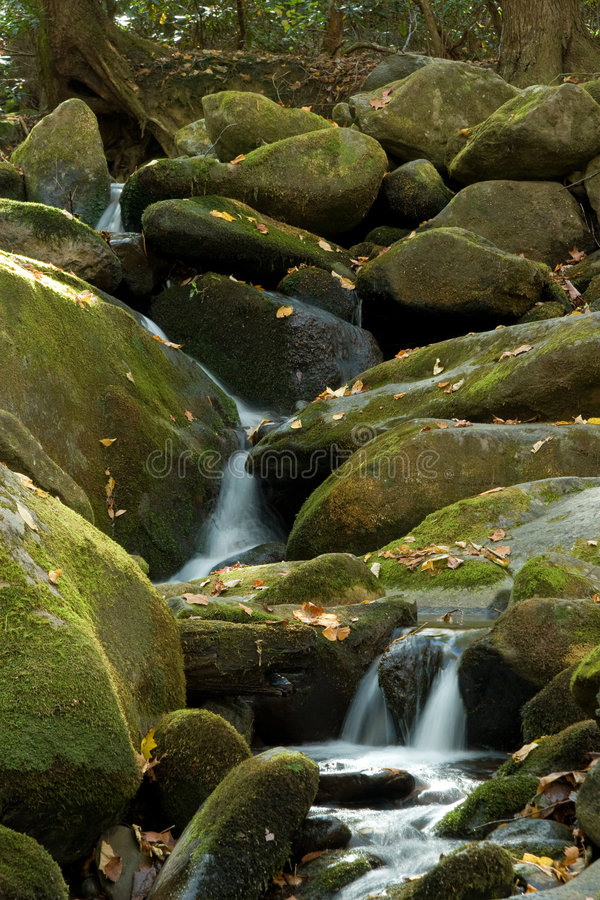 Waterfall in lush autumn woods stock photos