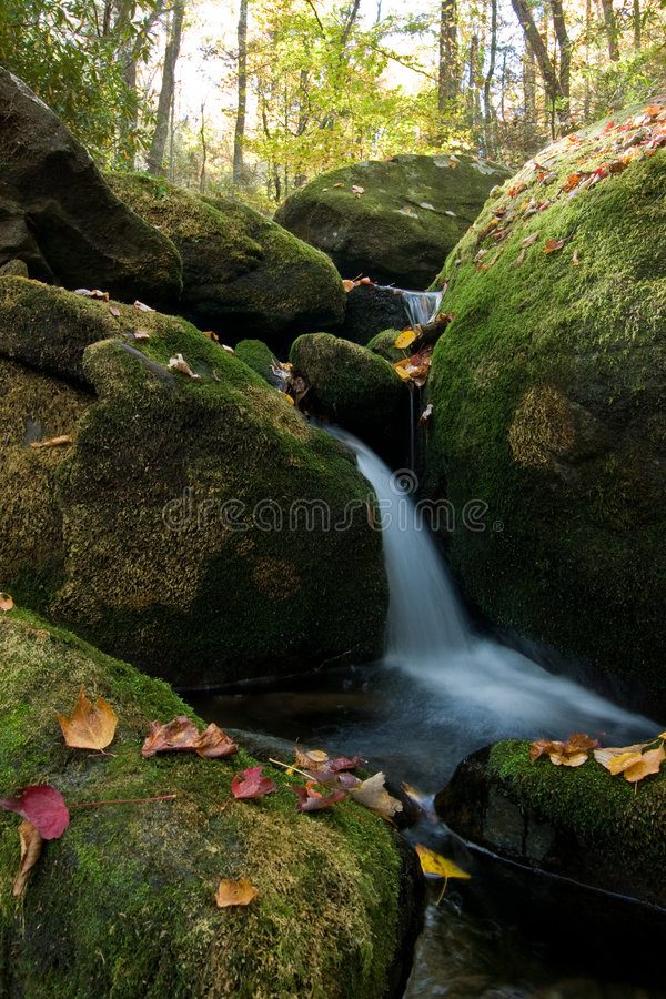 Waterfall in lush autumn woods royalty free stock photography