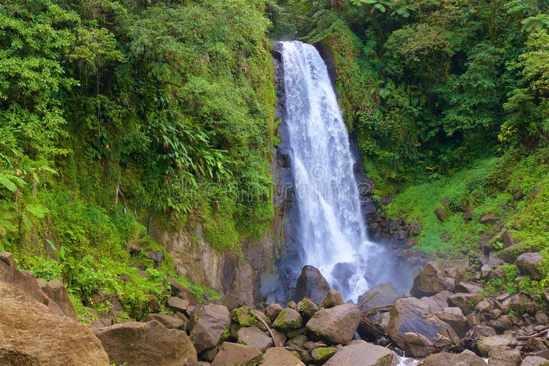 Waterfall in Martinique, Caribbean. Beautiful waterfall in Martinique, Caribbean royalty free stock photography