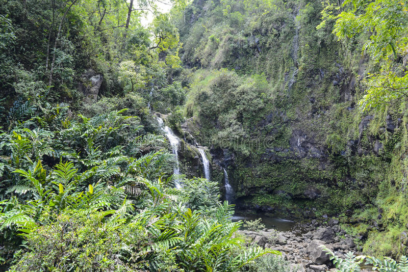 Download Waterfall in Maui stock image. Image of water, plants - 27813869