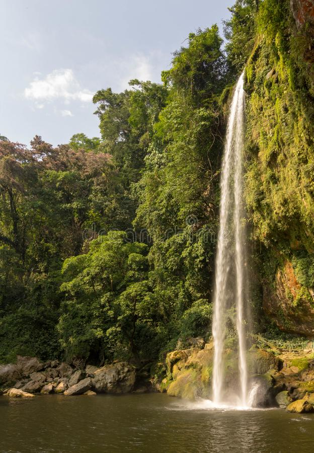 Waterfall misol-ha cascade falls. Hush cataract fallingstream nature forest mexico stock image