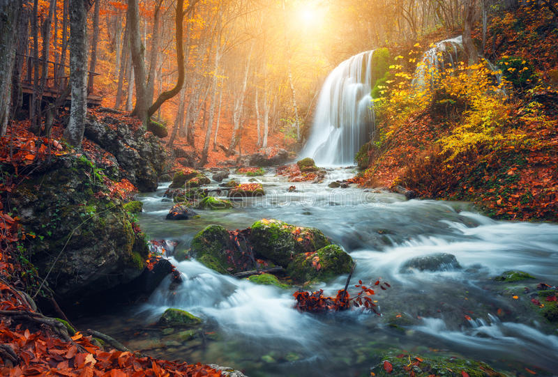 Waterfall at mountain river in autumn forest at sunset stock image download waterfall at mountain river in autumn forest at sunset stock image image of altavistaventures Images