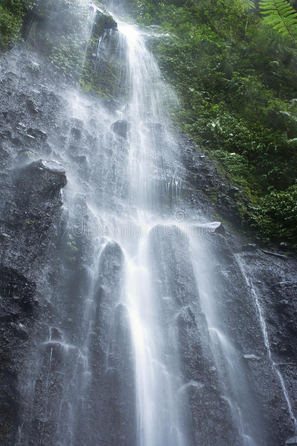Free Waterfall Nangka In Indonesia Stock Image - 11890561