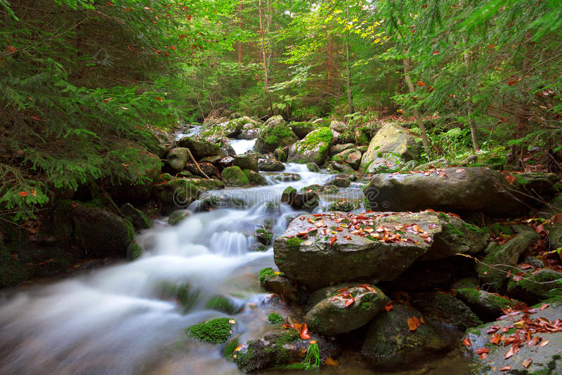 Waterfall in the national park Sumava, Czech Republic. Forest stock photography