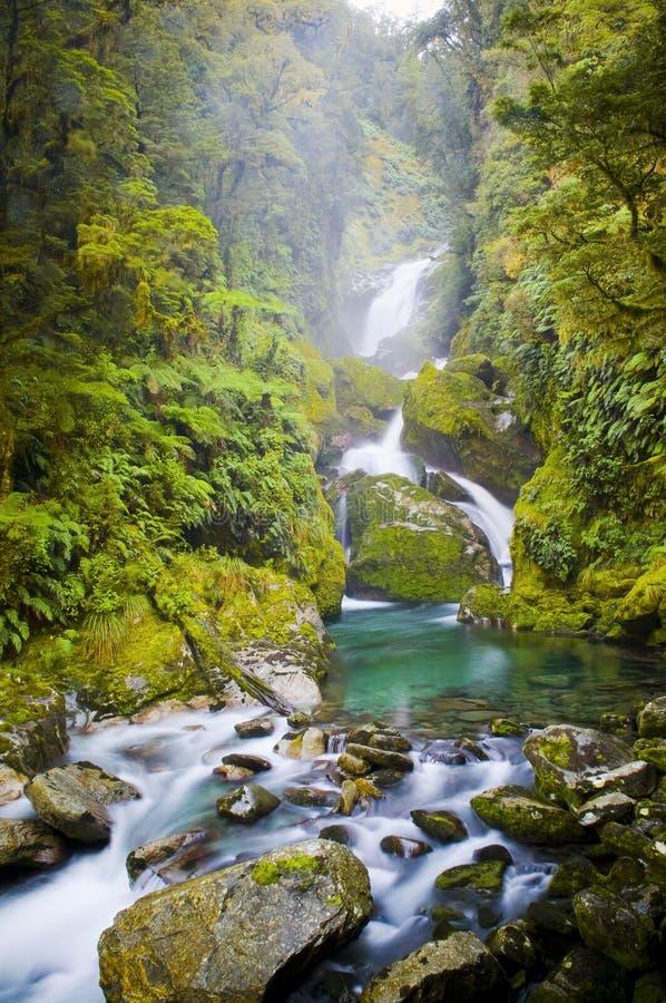 Waterfall New Zealand. Mackay Falls waterfall on the Milford Track, New Zealand stock photos