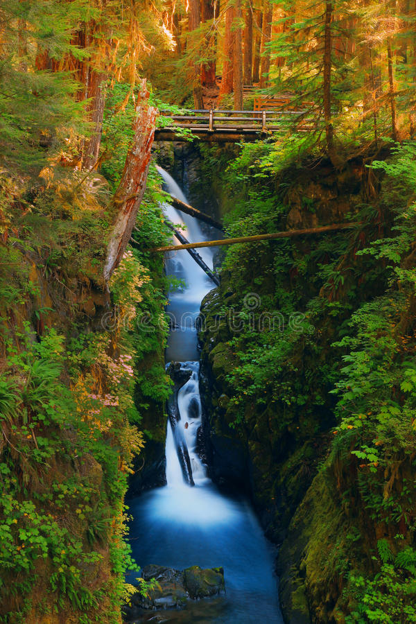 Waterfall in the Olympic National Park royalty free stock photos