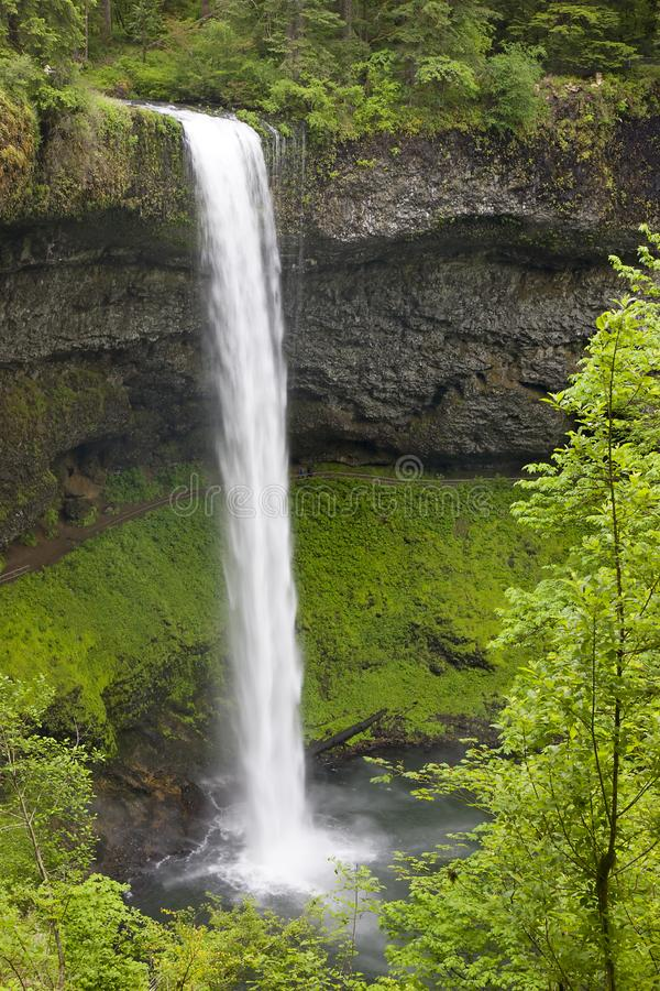 Waterfall in Oregon royalty free stock images