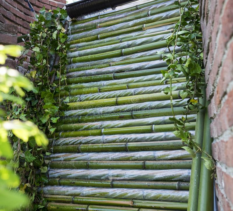 Waterfall. Ornamental waterfall of a garden made with green bamboo canes stock photos