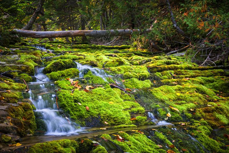 Waterfall over mossy rocks stock photography
