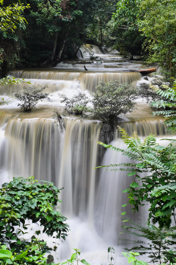 Download Waterfall in paradise stock photo. Image of rain, background - 26605516