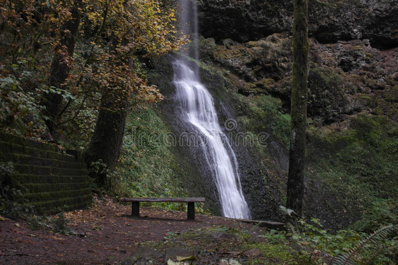 Waterfall Park bench a tranquilo place stock images