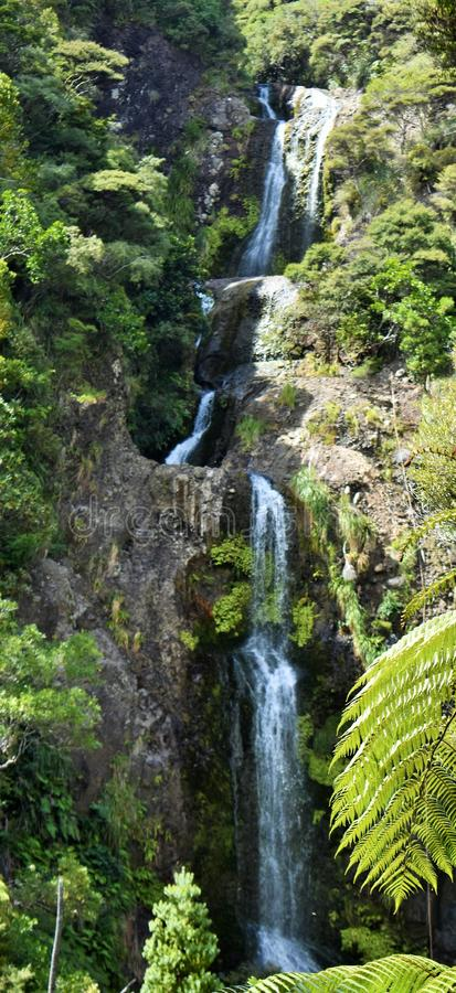 Waterfall at Piha Auckland New Zealand. Cascading waterfall viewed through shubbery and trees in Auckland New Zealand royalty free stock photo