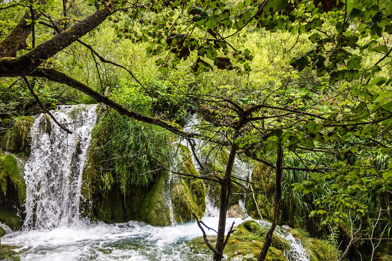 Waterfall of Plitvice lake, Croatia natural travel background, n royalty free stock image