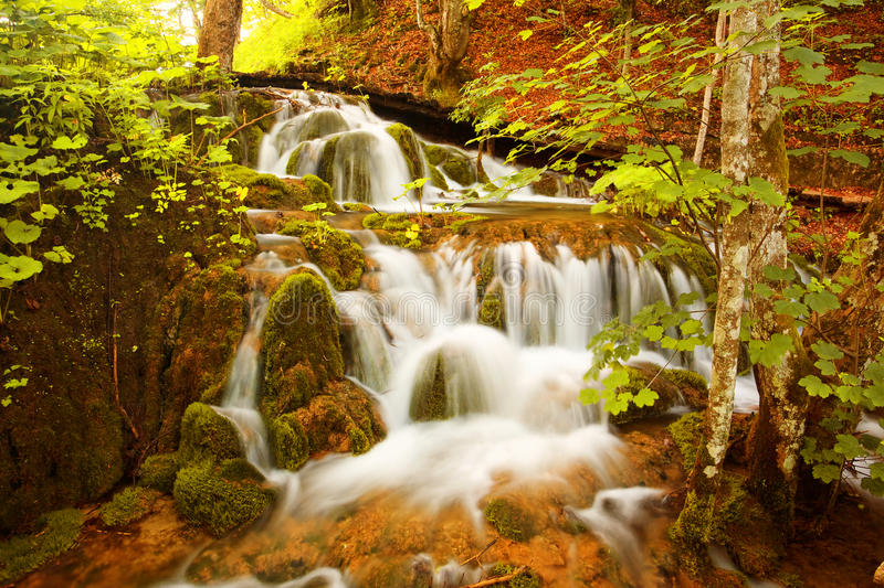 Waterfall, Plitvice Lakes. Falls in the Forest, National Park Plitvice Lakes, Croatia royalty free stock photo
