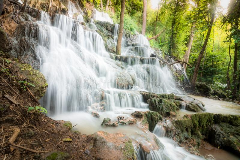 Waterfall in the Rain Forest royalty free stock images