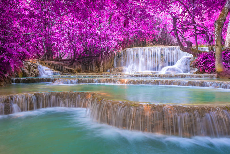 Waterfall in rain forest (Tat Kuang Si Waterfalls royalty free stock images