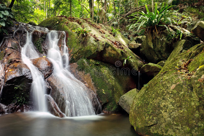 Waterfall In Rainforest Royalty Free Stock Images
