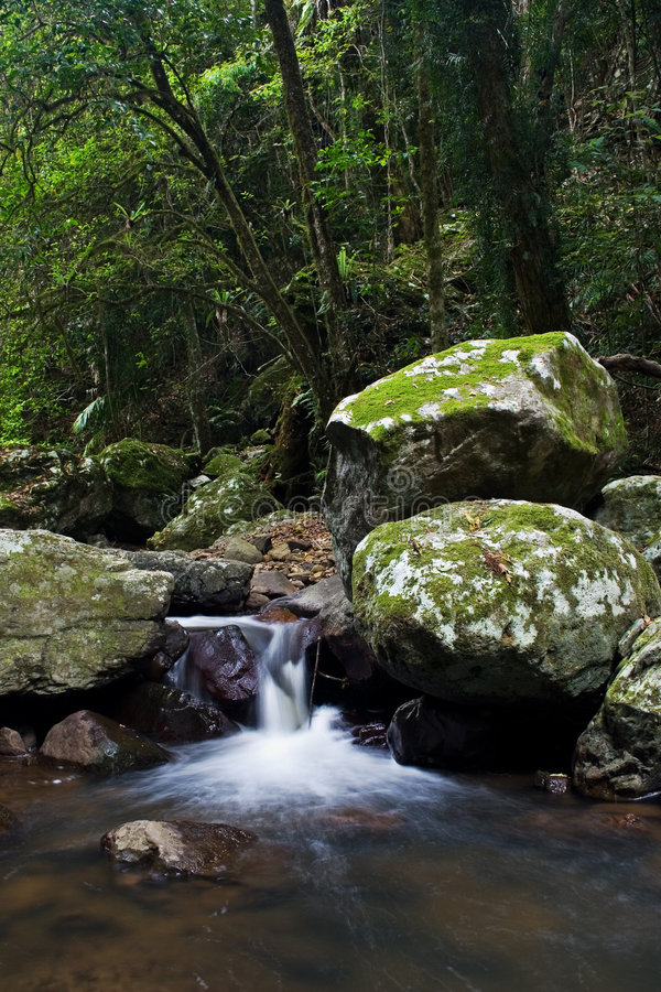 Download Waterfall in Rainforest stock image. Image of flowing - 4968913