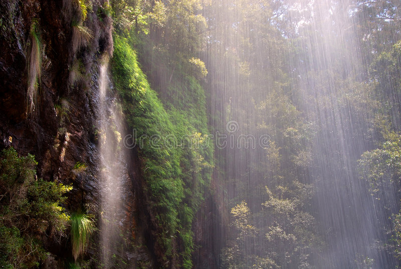 Waterfall in the Rainforest stock photography