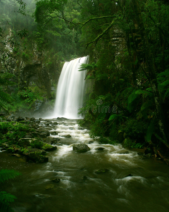 Download Waterfall In Rainforest, Victoria Stock Photo - Image: 8977326