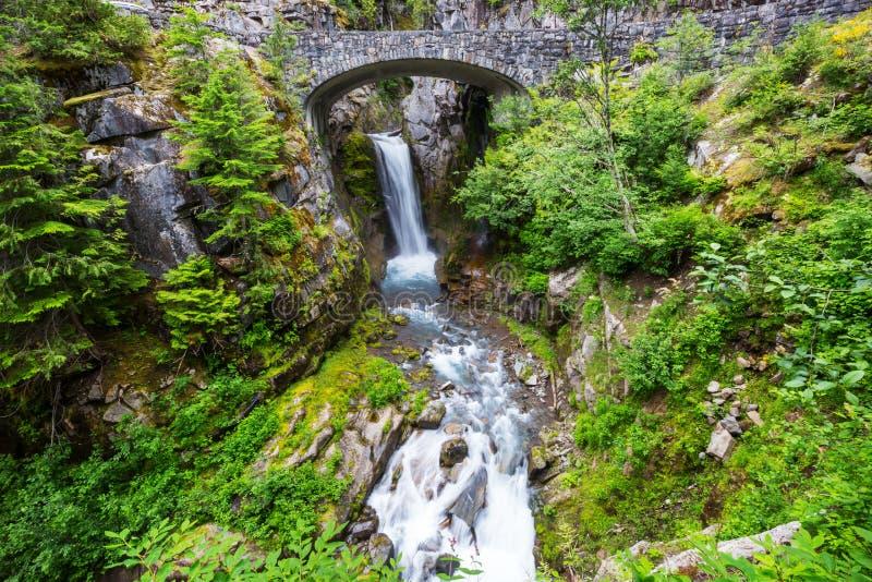 Waterfall in Rainier stock photo