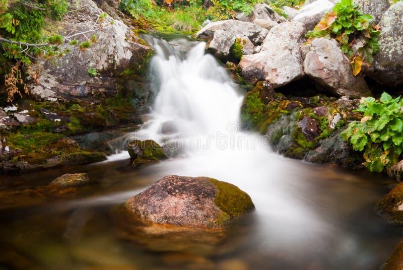 Waterfall in Retezat mountain stock photography