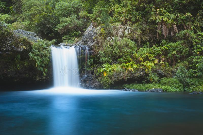 Waterfall in Reunion island royalty free stock images