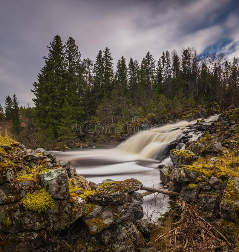Waterfall on the river in boreal, norwegian forest. Autumn time. stock image