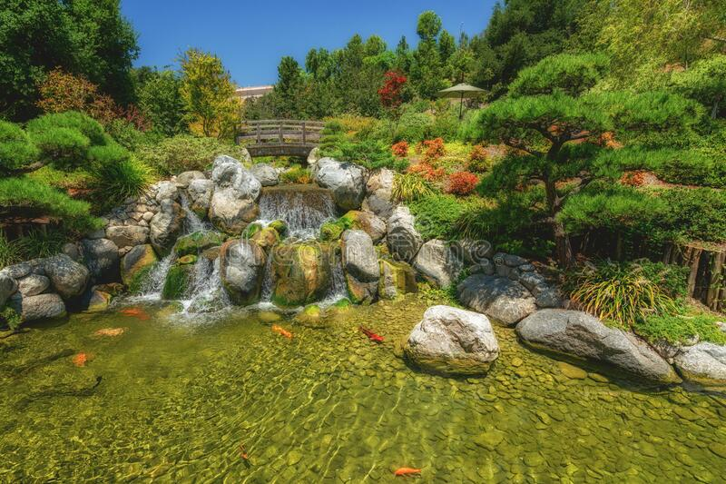 Waterfall and river with koi fish in traditional Japanese zen garden. Japanese zen garden. Waterfall and river with koi fish royalty free stock photos