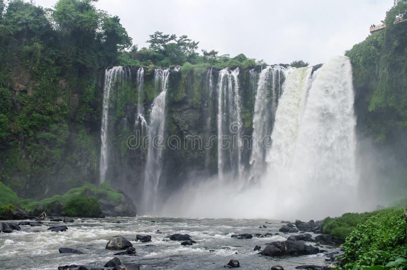 Waterfall Salto DE Eyipantla royalty-vrije stock foto's