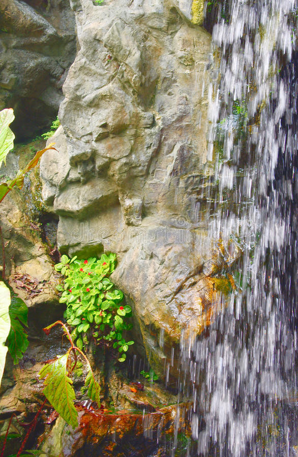 A Waterfall Fountain And Crane Sculptures In Singapore Botanic Gardens Stock Atbg
