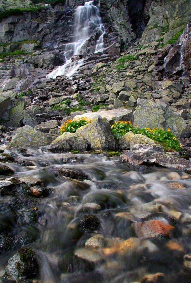 Waterfall - Skok royalty free stock images