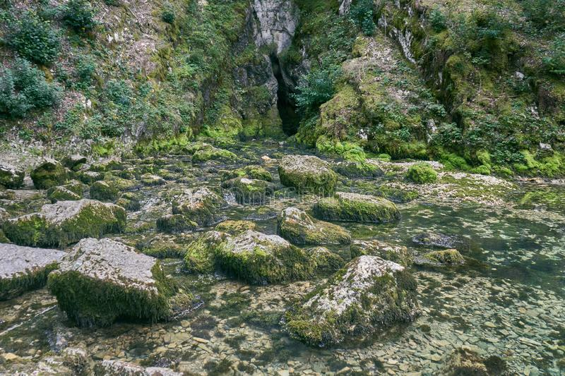 Waterfall at Source du Doubs Mouthe Franche Comté France with Green Plants. On A Sunny Day royalty free stock photos