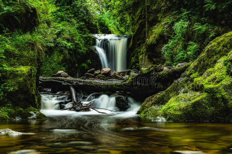 Waterfall in spring stock images