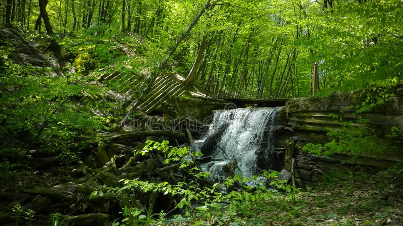 Waterfall in the spring forest royalty free stock image