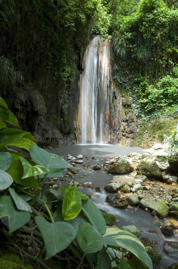Waterfall St Lucia Botanical Gardens. St. Lucia Botanical Gardens, also known as the Diamond Botanical Gardens, is home of the Diamond Waterfall and the oldest stock image