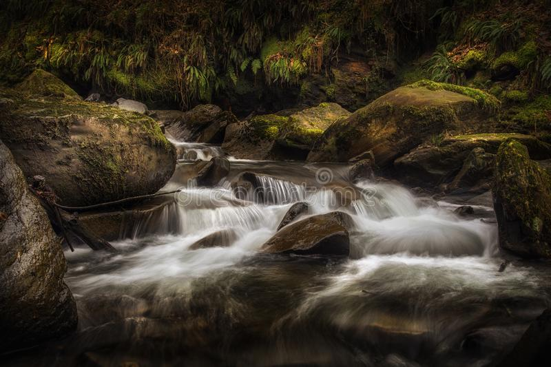 Textures of nature at Melincourt Brook. Waterfall, stones and ferns at Melincourt Brook in Resolven, South Wales, UK royalty free stock images