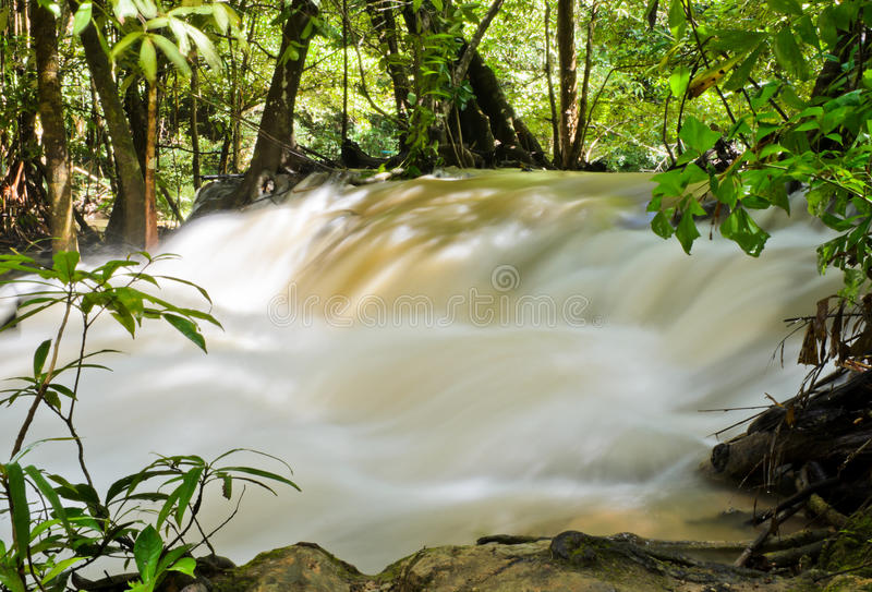 Download Waterfall stream stock photo. Image of plant, foliage - 26552048