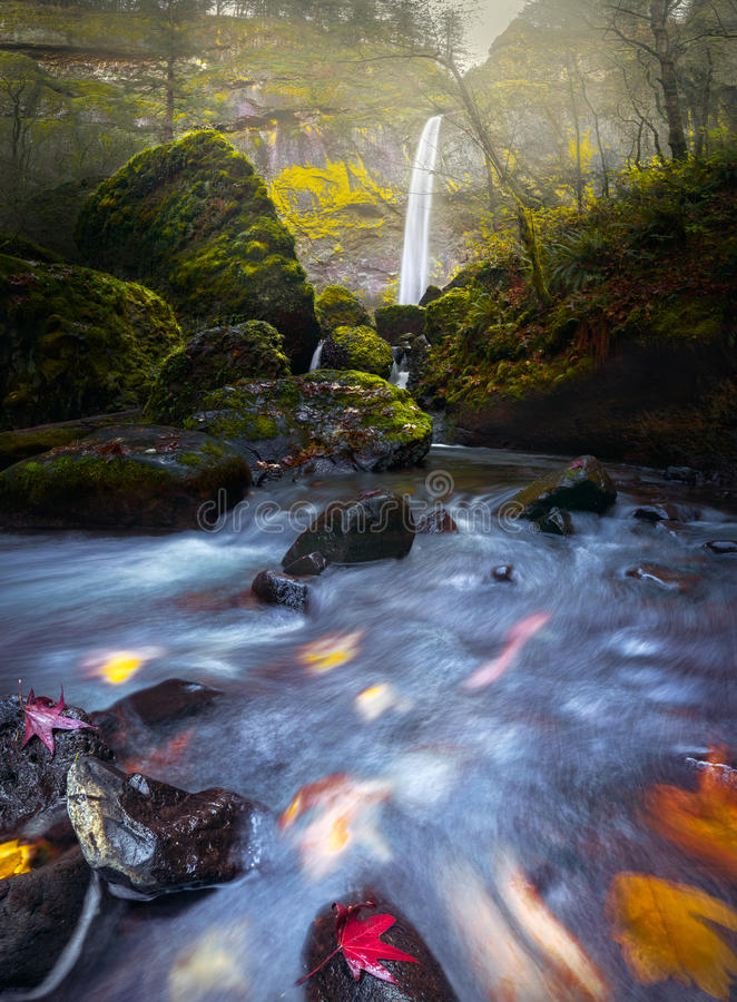 Waterfall and stream with fluxing autumn leaves royalty free stock photos
