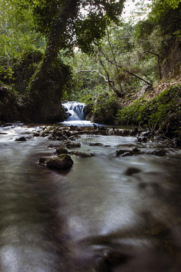 Download WATERFALL Surrounded By Nature Stock Photo - Image: 30651570