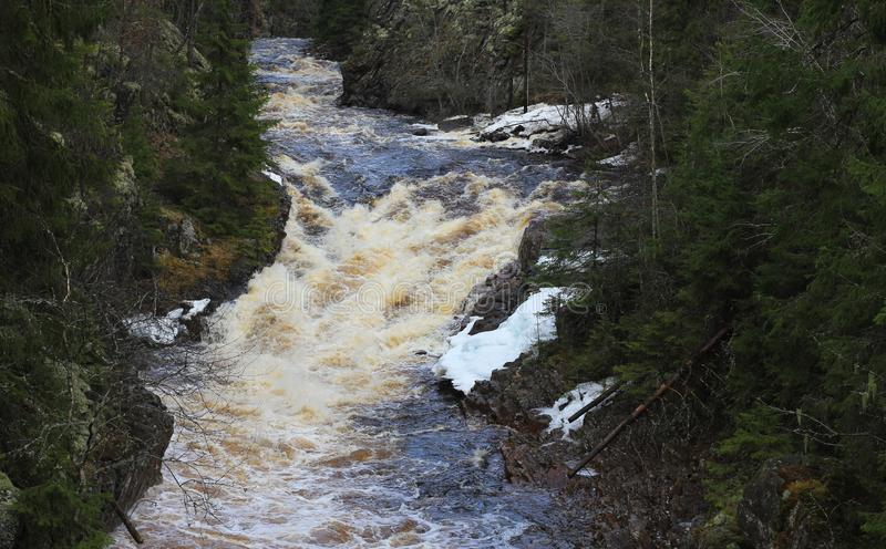 Waterfall in Sweden royalty free stock photo