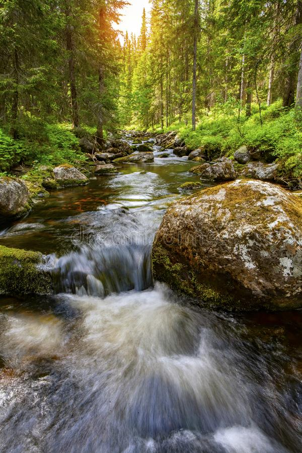 Waterfall in Sweden royalty free stock images