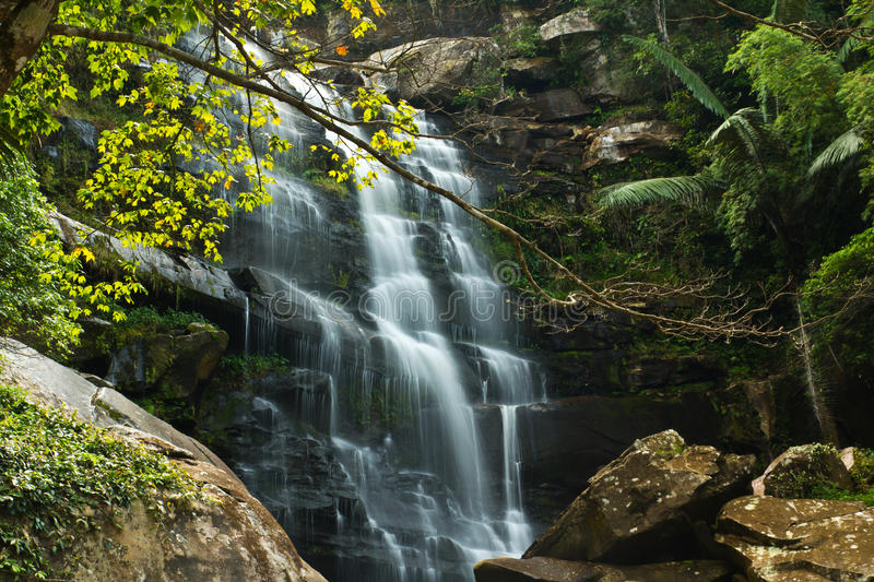 Download Waterfall in Thailand stock image. Image of leaf, tranquil - 22311541