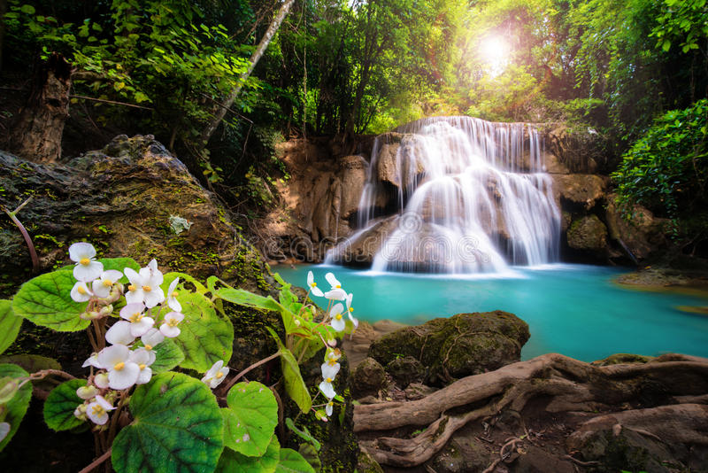 Waterfall in Thailand, called Huay or Huai mae khamin in Kanchanaburi Provience. Around with flower foreground ,forest environment and emerald water royalty free stock images