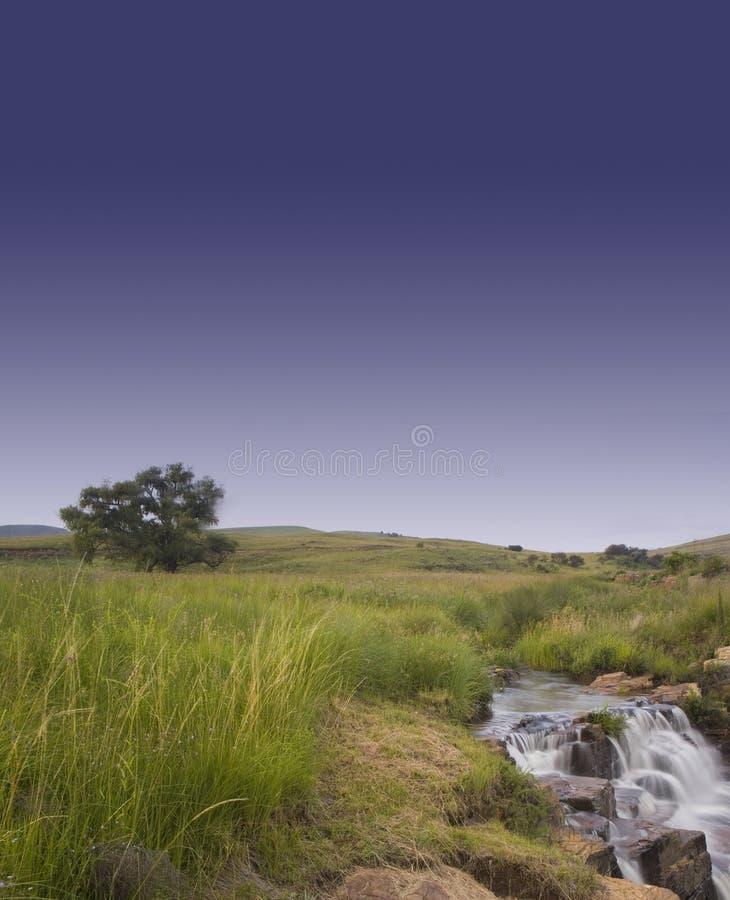Waterfall, tree and sky 1 stock photo
