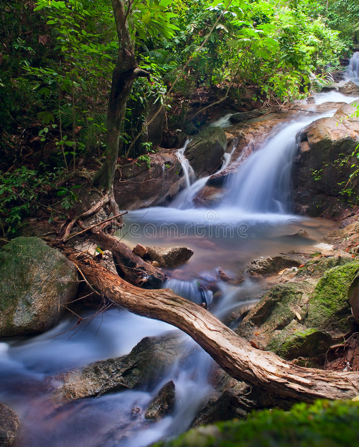 Waterfall in tropical forest. Mountain river, stones with moss and green trees stock photography